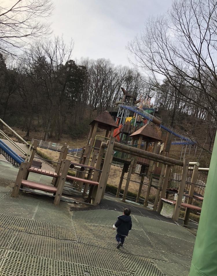滑り台と遊具の写真