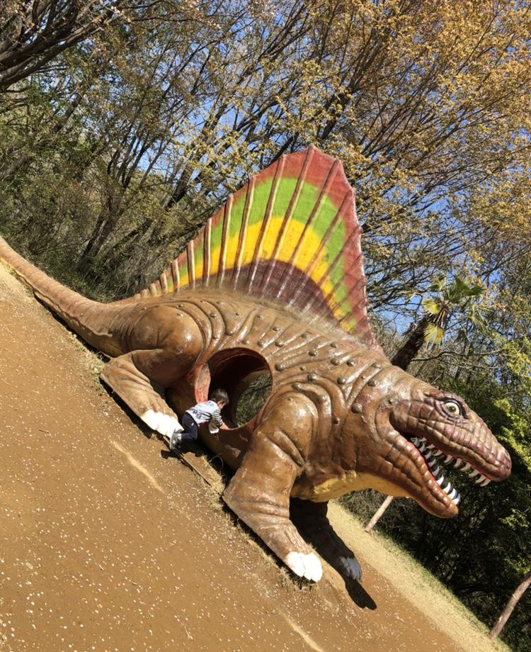 恐竜おなかの中に入っていく写真