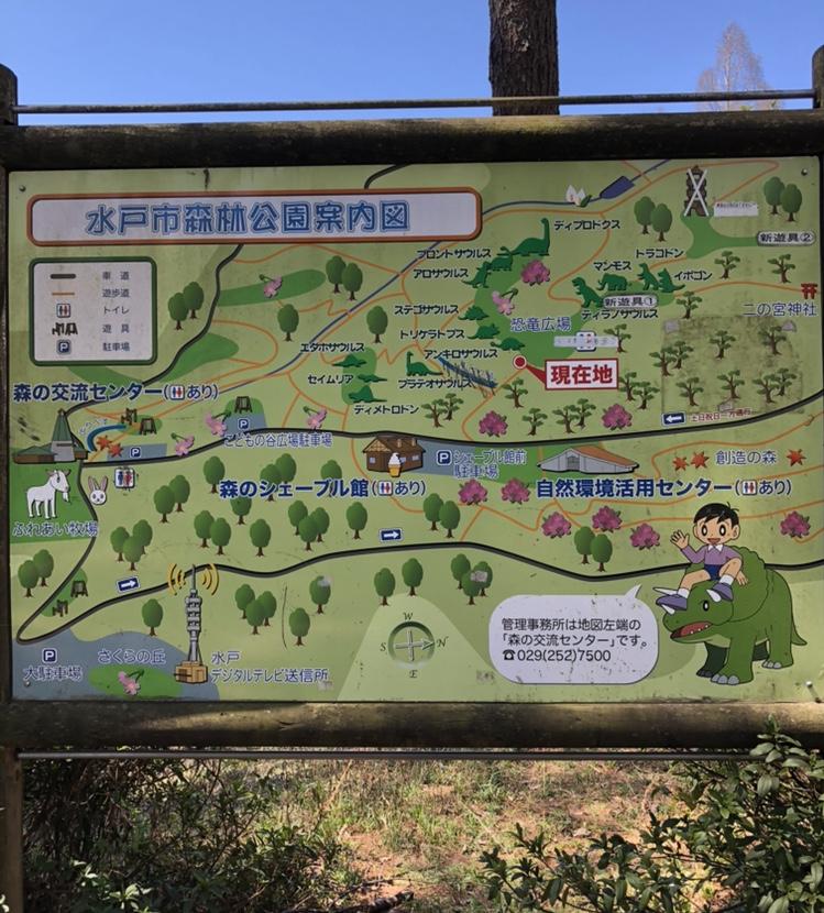 森林公園の案内図