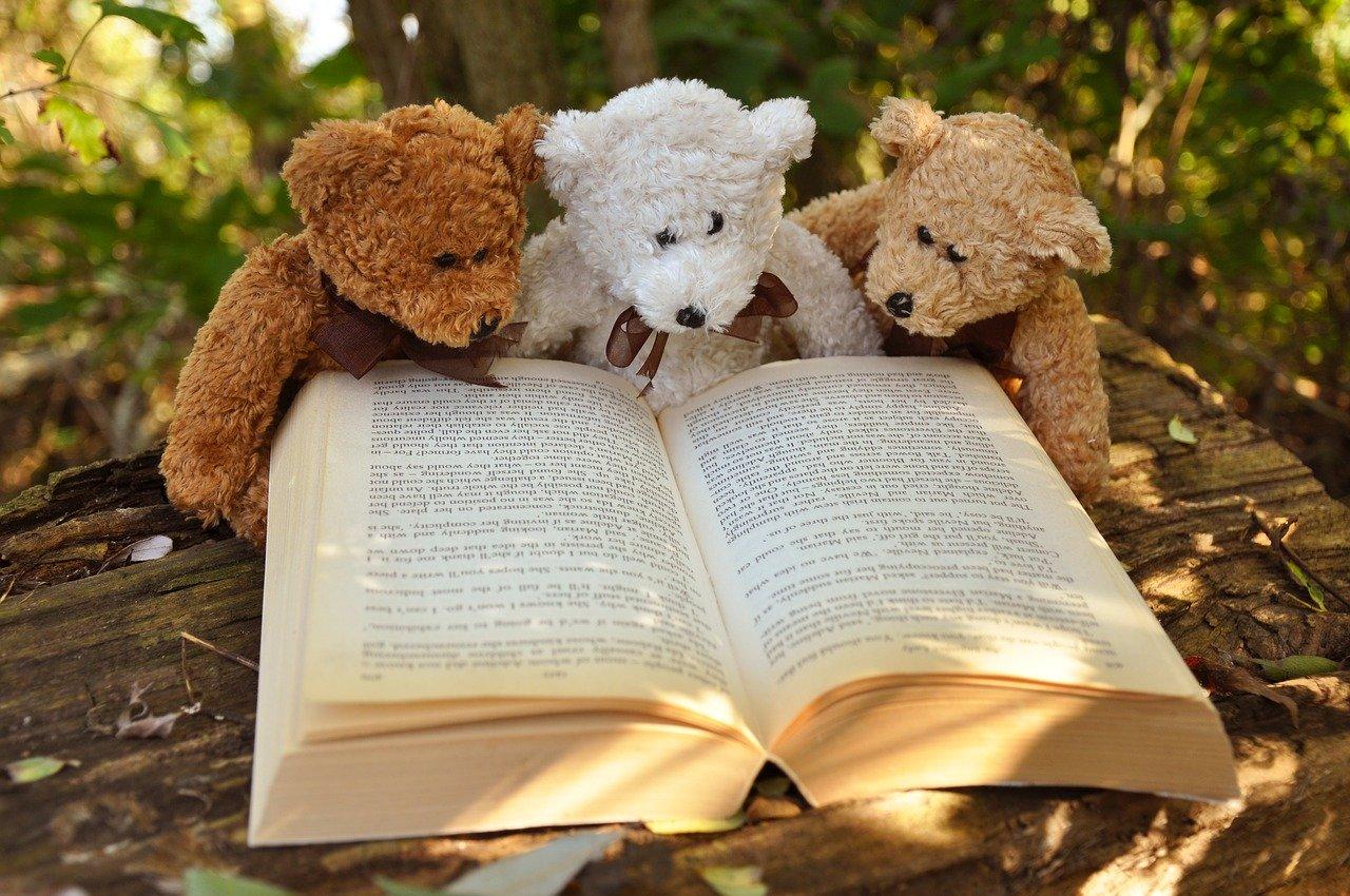 三匹のくまが本を見ている